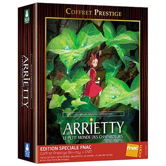 arrietty le petit monde des chapardeurs combo blu ray dvd coffret sp cial fnac blu ray. Black Bedroom Furniture Sets. Home Design Ideas