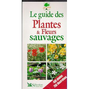 guide des plantes et fleurs sauvages broch collectif achat livre achat prix fnac. Black Bedroom Furniture Sets. Home Design Ideas