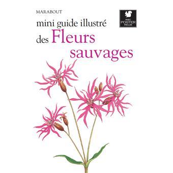Le petit guide des fleurs sauvages broch collectif for Le prix des fleurs