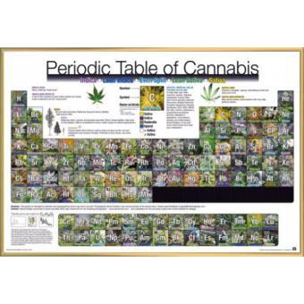 poster encadr humour cannabis periodic table 61x91 cm cadre plastique or top prix sur. Black Bedroom Furniture Sets. Home Design Ideas