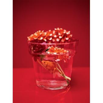 Fleurs poster reproduction dahlia et poisson rouge for Prix poisson rouge 15 cm