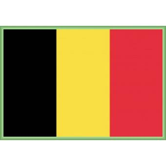 poster encadr belgique drapeaux du monde 61x91 cm cadre plastique vert top prix fnac. Black Bedroom Furniture Sets. Home Design Ideas