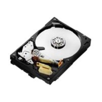 À la pointe de l´innovation, le disque dur Hitachi Deskstar 7K1000 offre aux équipements électroniques grand public et professionnels les plus évolués jusqu´à un téraoctet de stockage. Conçu à partir des techniques d´enregistrement magnétique perpendicula