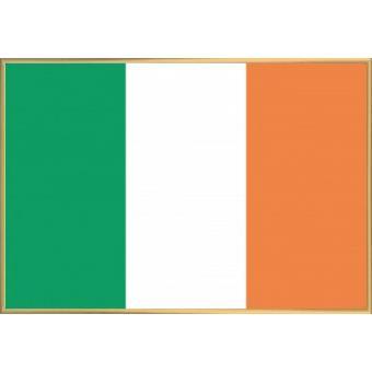 poster encadr irlande drapeaux du monde 61x91 cm cadre plastique or top prix fnac. Black Bedroom Furniture Sets. Home Design Ideas
