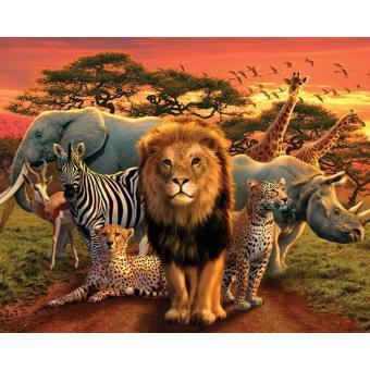 Poster Savane d'Afrique 40 x 50cm, Top Prix   fnac
