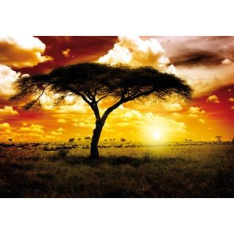 afrique papier peint photo poster coucher de soleil acacia dans la savane 3 parties 250x360. Black Bedroom Furniture Sets. Home Design Ideas