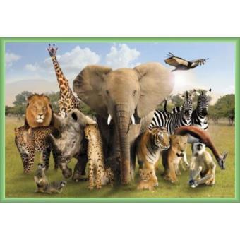 poster encadr animaux les animaux d 39 afrique 61x91 cm cadre plastique vert top prix fnac. Black Bedroom Furniture Sets. Home Design Ideas