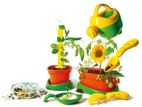Découvre des sciences, expérimente et développe. Des nombreuses activités amusantes pour jouer avec la nature. De quoi ont besoin les plantes ? Comment germe une graine ?