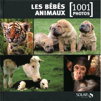 les b b s animaux en 1001 photos cartonn collectif achat livre achat prix fnac. Black Bedroom Furniture Sets. Home Design Ideas