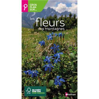 Les fleurs des montagnes broch wolfgang lippert for Le prix des fleurs