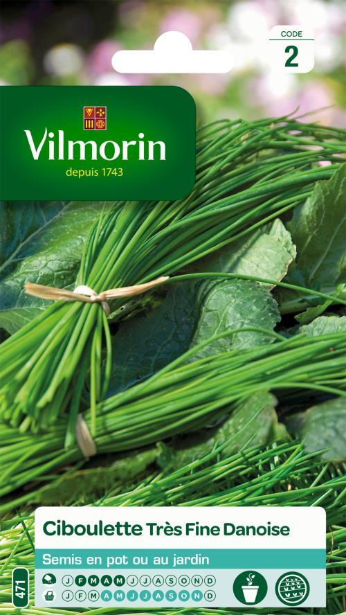 Ciboulette très fine danoise Vilmorin