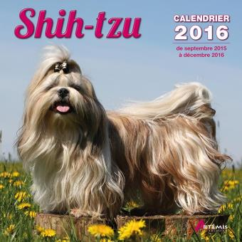 Calendrier 2016 Shih-tzu - broché - Collectif - Achat
