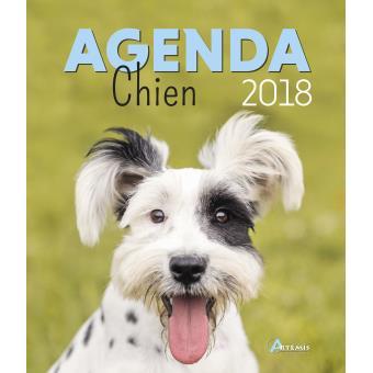 Agenda 2018 chien cartonn collectif achat livre - Agenda photo personnalise pas cher ...