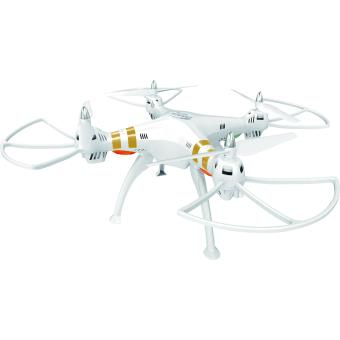 Drone Takara Whitebird DMS235 + Mini Drone de test