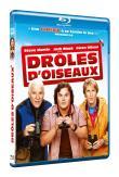 Photo : Drôles d'oiseaux - Blu-Ray