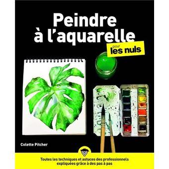 Pour Les Nuls L 39 Aquarelle Pour Les Nuls Caroline