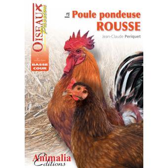 La poule pondeuse rousse broch jean claude p riquet - Poule pondeuse a donner ...