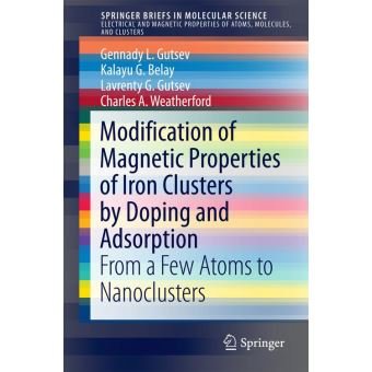 The modification of magnetic properties of iron clusters by doping and adsorption