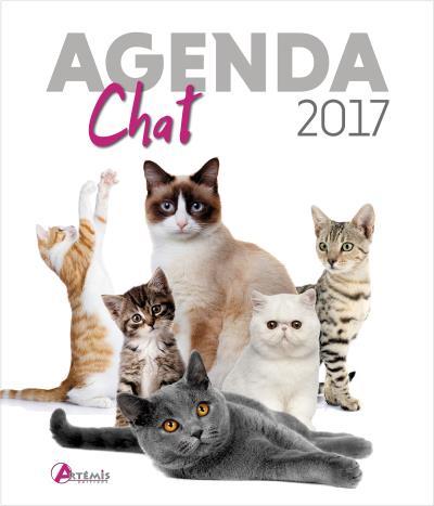 Agenda 2017 Chat