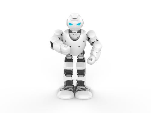 catgorie robots jouets du guide et comparateur d 39 achat. Black Bedroom Furniture Sets. Home Design Ideas