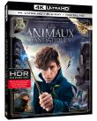 FANTASTIC BEASTS AND WHERE TO FIND THEM -BLURAY4K-BIL