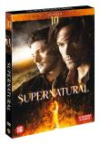 Supernatural Saison 10 DVD (DVD)
