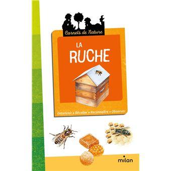 La Ruche Broch Pascale H Delin Achat Livre Achat