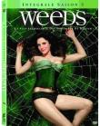 Weeds Coffret Saison 5 DVD Amaray (DVD)
