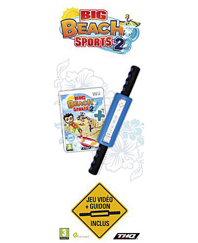 Big Beach Sports 2 + Guidon  - Nintendo Wii