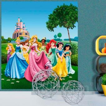 Papier Peint Xl Chateau Au Printemps Princesse Disney Autre Poster