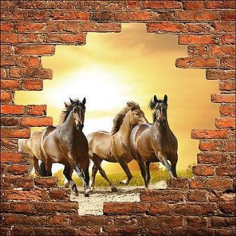 Sticker mural trompe l/'oeil chevaux 852