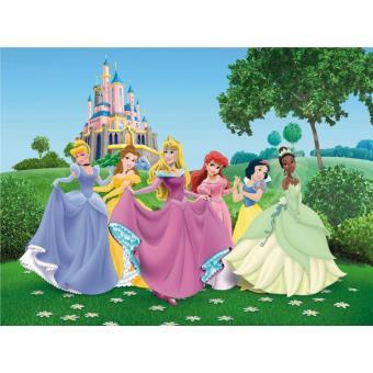 Papier Peint Xxl Chateau Princesse Disney Autre Poster Top Prix Fnac