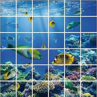 Stickers carrelage mural, faience,déco cuisine ou salle de bain Poissons  réf 850 Dimension totale - 60x60cm, Dimension du carreau - 15x15cm