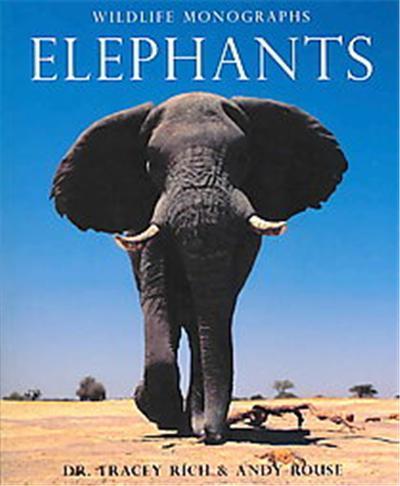 Elephants wildlife monographsg solutioingenieria Image collections