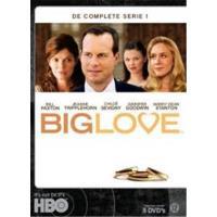 BIG LOVE 1-5 DVD-VN