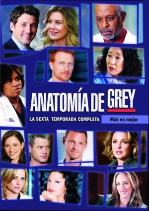 Anatomía de Grey - Temporada 6 - DVD - Varios directores - Ellen ...