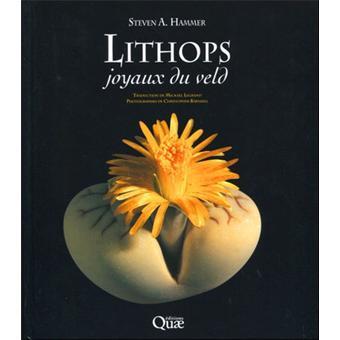 Lithops, joyaux du veld
