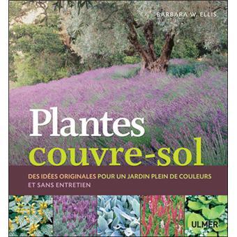 plantes couvre sol des id es originales pour un jardin plein de couleurs sans entretien. Black Bedroom Furniture Sets. Home Design Ideas