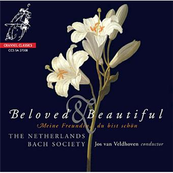 Beloved and beautiful
