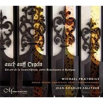 Auch Auff Orgeln-Eine Kunst Der Transkription