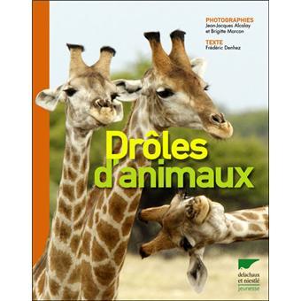 Droles D Animaux Broche Jean Jacques Alcalay Achat Livre Fnac