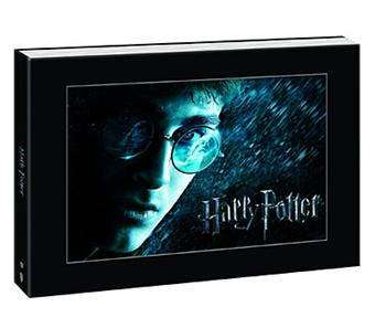 harry potter l 39 int grale coffret des films 1 6 dvd zone 2 achat prix fnac. Black Bedroom Furniture Sets. Home Design Ideas