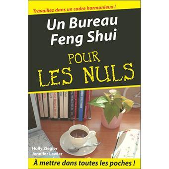FENG SHUI LE POCHE POUR LES NULS