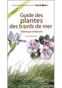 Guide des plantes de bord de mer atlantique et manche - Plantes bord de mer atlantique ...