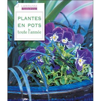 plantes en pots toute l 39 ann e broch collectif livre tous les livres la fnac. Black Bedroom Furniture Sets. Home Design Ideas
