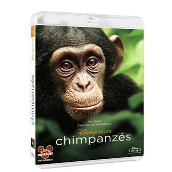 Chimpanzés - Blu-Ray