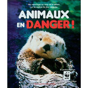 Animaux En Danger Broche Mills Andrea Achat Livre Fnac