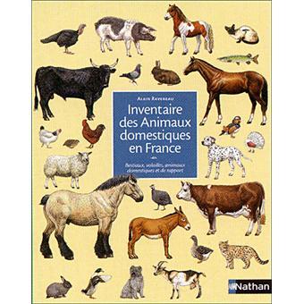 inventaire des animaux domestiques en france cartonn alain raveneau achat livre fnac. Black Bedroom Furniture Sets. Home Design Ideas