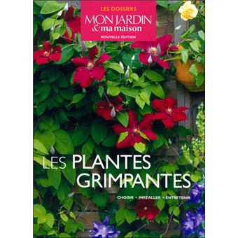 achat plantes grimpantes