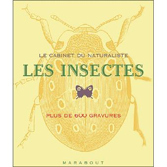 les insectes cabinet de naturaliste broch c beverley d ponsonby achat livre fnac. Black Bedroom Furniture Sets. Home Design Ideas